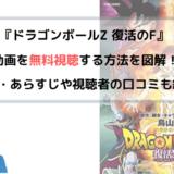 ドラゴンボールZ 復活の「F」 劇場版(映画)フル動画を無料視聴する方法を図解!