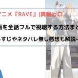 アニメ『RAVE』無料動画を全話フルで視聴する方法まとめ